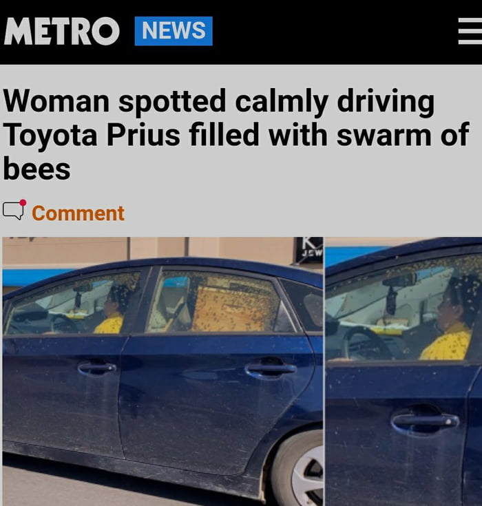 METRO -  Woman spotted calmly driving Toyota Prius filled with swarm of bees  C7 Comment  vipe—