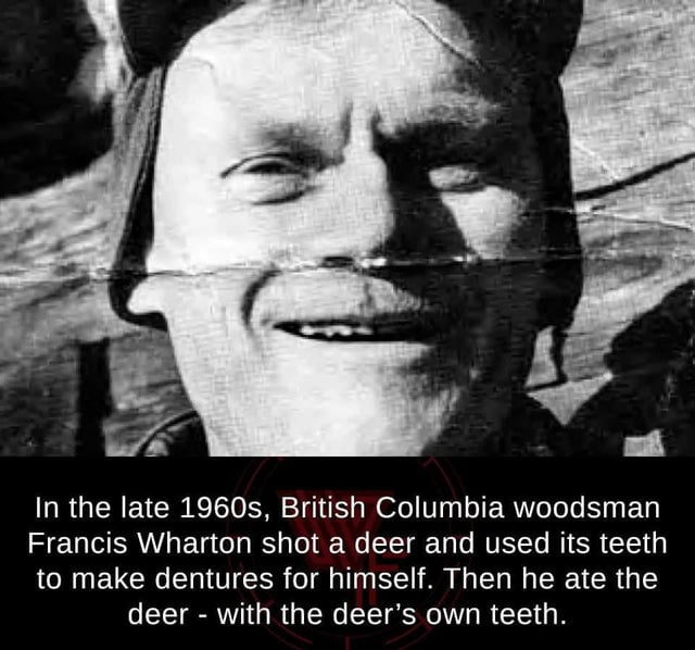 In the late 19605, British Columbia woodsman  Francis Wharton shot a deer and used its teeth  to make dentures for himself. Then he ate the deer - with the deer's own teeth.