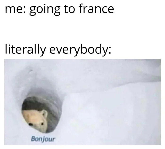 me: going to france  literally everybody: