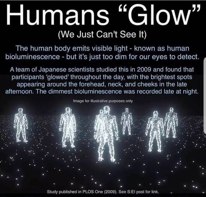 """Humans """"Glow""""  (We Just Can't See It)  The human body emits visible light - known as human bioluminescence - but it's just too dim for our eyes to detect,  A team of Japanese scientists studied this in 2009 and found that panicipants 'glowed' throughout the day, with the brightest spots appearing around the forehead. neck. and cheeks in me late afternoon. The dimmest bioluminescence was recorded late at nigh'.  'mngu tor Illuslmuvu purposes onw     Smdy publvshefl m PLOS One (2009). See S:E\ posl [or unk. . ."""