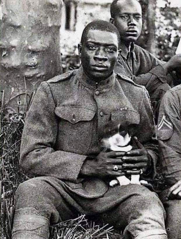 """A member of the 369th Infantry Regiment (aka """"Harlem Hellfighters"""") 1918"""