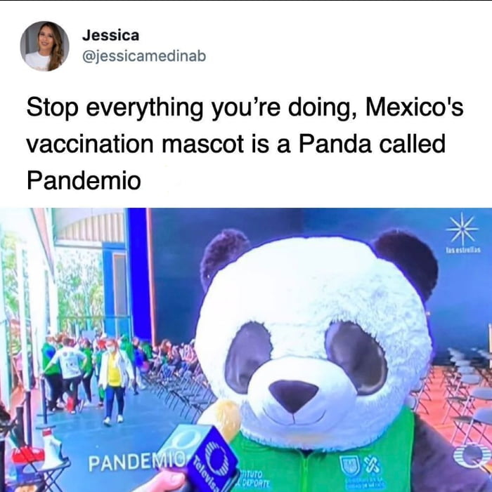 Jessica @jessicamedinab  Stop everything you're doing, Mexico's vaccination mascot is a Panda called Pandemic  \v'HV' F  \ -V,