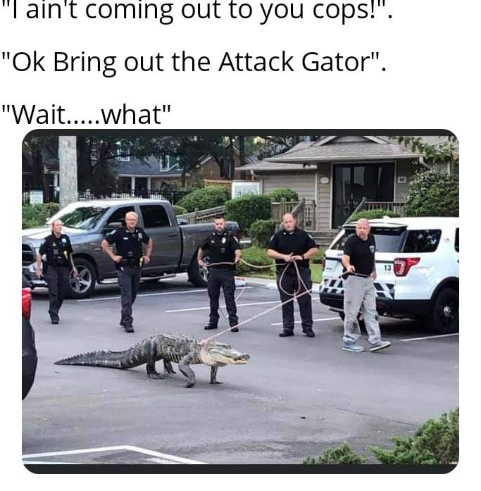 """""""I ain't coming out to you copsl"""".  """"Ok Bring out the Attack Gator""""."""