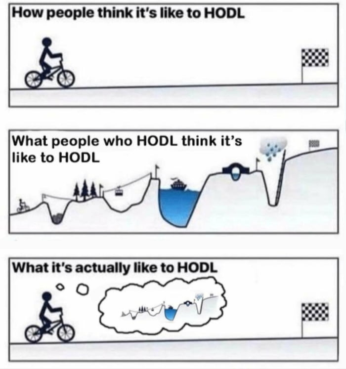 How people think It's like to HODL  What people who HODL think it's like to HODL