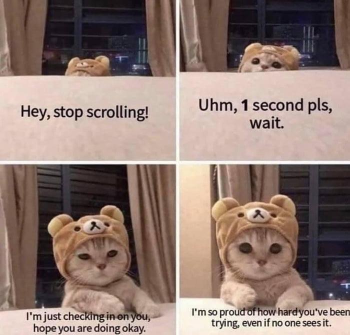 Uhm, 1 second pls, wait.  Hey, stop scrolling!     hopeyouec aredoingokay trying, even if no oneseesit.