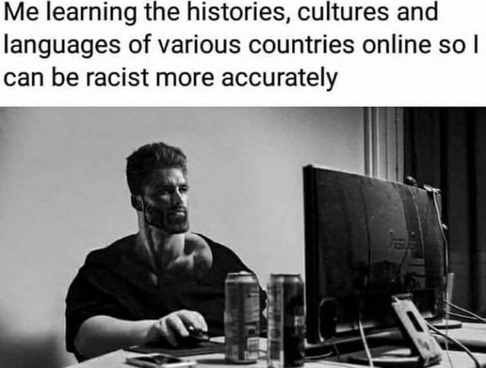 Me learning the histories, cultures and languages of various countries online so I can be racist more accurately  r
