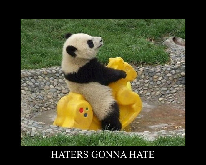 m,  HATERS GONNA HATE