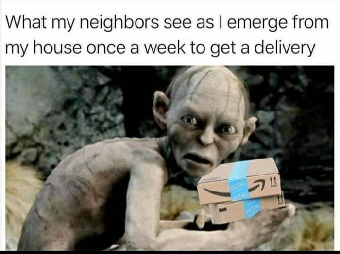 What my neighbors see as l emerge from my house once a week to get a delivery