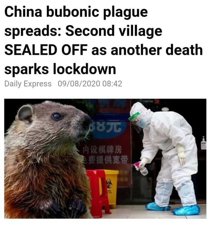 China bubonic plague spreads: Second village SEALED OFF as another death sparks lockdown  DaHy EXDIE'SS U9, 0800590 08 L1?