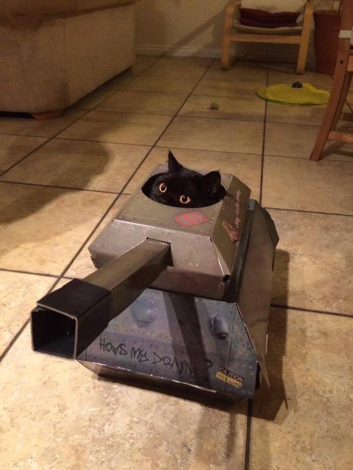 CAT OF WAR, LONG RANGED BOSS