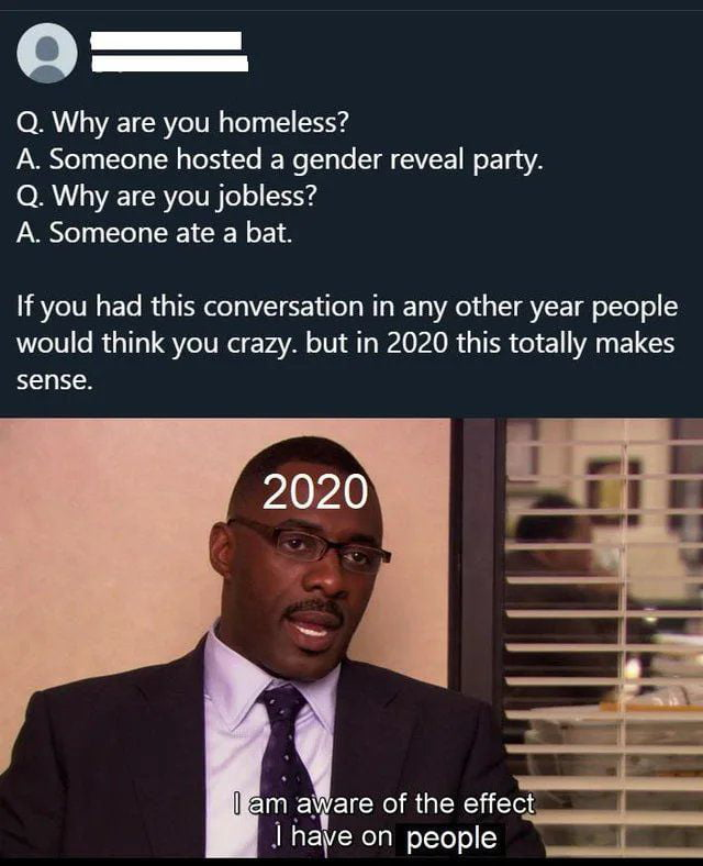 O —  —  Q. Why are you homeless?  A. Someone hosted a gender reveal party.  Q. Why are you jobless? A. Someone ate a bat.  If you had this conversation in any other year people would think you crazy. but in 2020 this totally makes sense.          m :a. are of the effect  J have on people |. _
