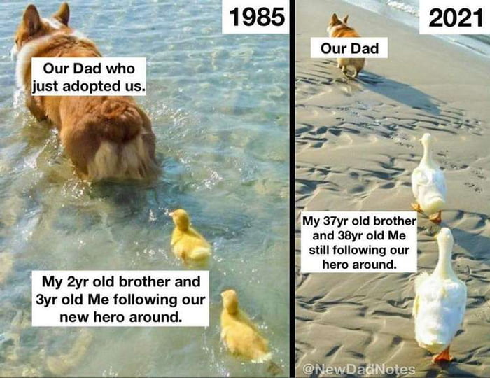 """'My 37yr old brolhe :3 a and aayr o d Me _ slill following nur . ' hero around. . My 2yr old brother and > ; ,7 3yr old Me following our -' a new hero around.  a"""" a"""